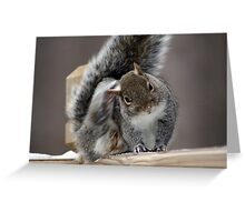 Got any food? Greeting Card