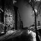 I Walk Alone 3 by TheNatureOfThings