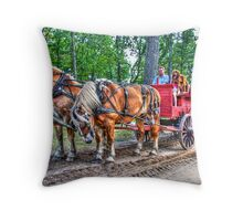 Who signed us up for this Dog and Pony Show! Throw Pillow