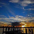 Marina Sunset, Forster by bazcelt