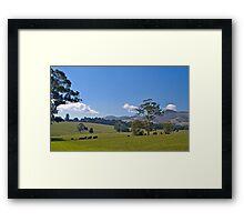 Premium cow country: Warragul, Victoria. Framed Print