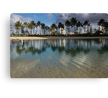 Palm Trees, Crystal Clear Lagoon Water and Tropical Fish Canvas Print
