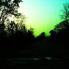 dusk by ROHIT GANGA DEB