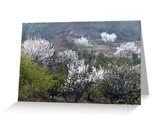 Early Spring rural China Greeting Card