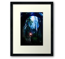 Meeting the Elf Lord Framed Print