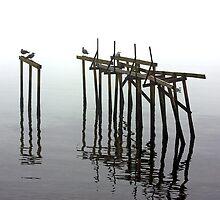 Dancing Poles by Christian Hartmann