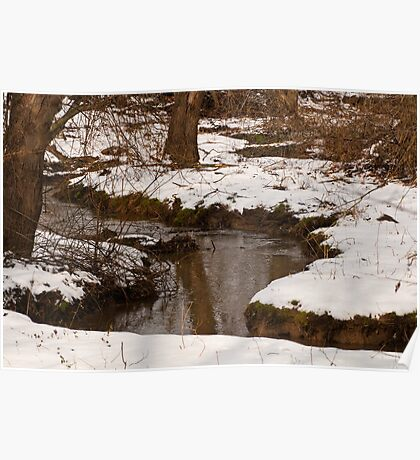 STREAM BED WITH SNOW Poster