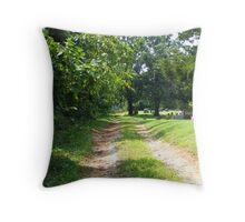 Graveyard Road Throw Pillow