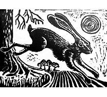 Hare...Linoprint Photographic Print