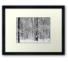 Quiet Unexpected Beauty Framed Print
