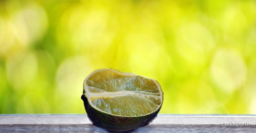 Lime by carlosporto