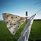 Lomo - Laundry by Thomas Spiessens