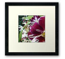 Flower colored playful Framed Print