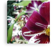Flower colored playful Canvas Print
