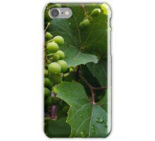 grapes in the rain iPhone Case/Skin