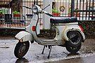 The latest model, Ravello, Amalfi Coast, Campania, Italy by Andrew Jones