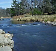 Pine Creek by Richard Williams
