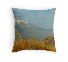 Wheat fields of Khor Virap Throw Pillow