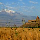Picturesque Armenia by fortheloveofit