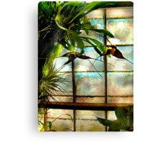 Hanging Out Orchid Style Canvas Print