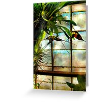 Hanging Out Orchid Style Greeting Card