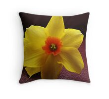 Leather and Silk Throw Pillow