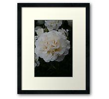 White Wedding Framed Print