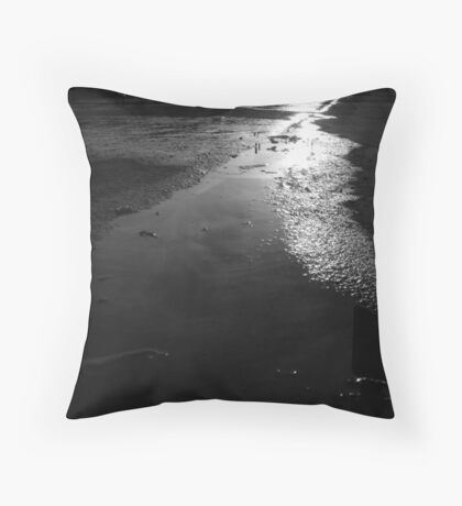 water on sidewalk Throw Pillow