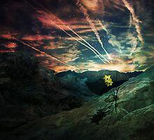 Phoenix Reborn. by TwistedHearts