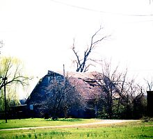 Kentucky Farming by Pauline Evans