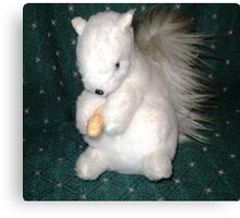 Exeter- White Squirrel - made for me as a gift Canvas Print