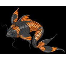 Koi Fish Study Photographic Print