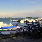 Bicycles and Boats  by sstarlightss
