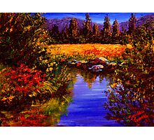 River Reflections on Tuolumne Meadows Photographic Print