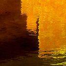 evening gold by David Rozario