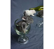 Easter toast Photographic Print
