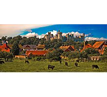 Arundel Castle, Red Rooftops and Cows  Photographic Print