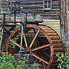 Big Wheel Keep on Turning by Monnie Ryan