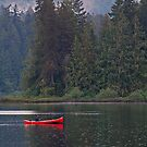 Canoe on Shawnigan Lake by Tracy Riddell