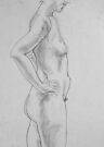 female nude.... pencil study #2 by Juilee  Pryor