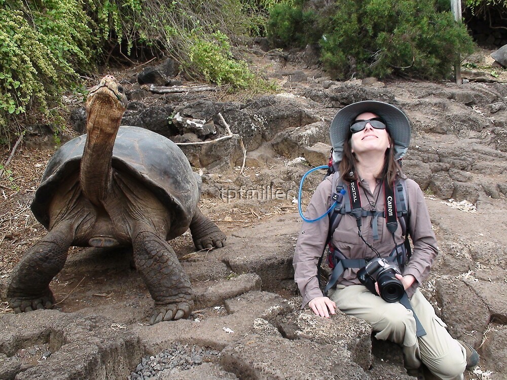 Photographer Meditating with Galapagos Tortoise by tpfmiller