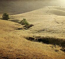 Mission Peak Sunrise by Ellen Cotton