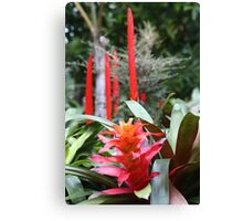 Red Candlestick Canvas Print