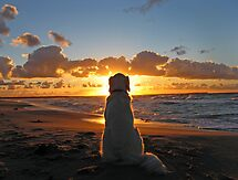 My Golden Retriever enjoys a beautiful sunset by Trine