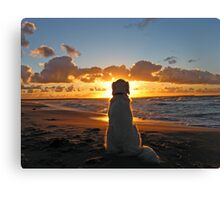 My Golden Retriever enjoys a beautiful sunset Canvas Print