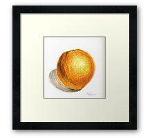 Navel Orange Framed Print