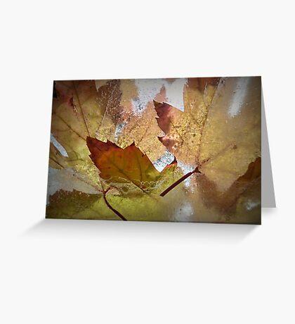 Autumn Colours, Frozen Greeting Card