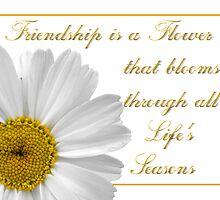 Friendship Flower by Jan  Tribe