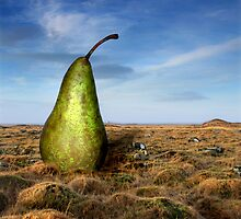 Pear & Tussocks by Þórdis B.