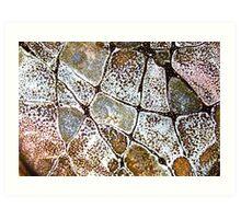 Mosaic Glaze 6 Carcoar Art Print